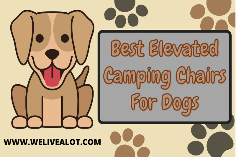 best elevated camping chairs for dogs
